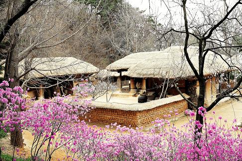 Национальная деревня Минсокчон 민속촌