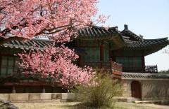 Дворец Чхандоккун 창덕궁