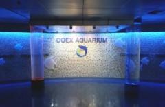 Coex Aquarium  아쿠아리움코엑스