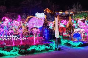 Фестиваль света на острове Herb Island