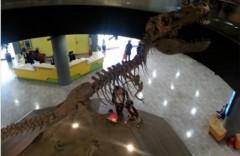 Музей Науки в Сеуле 국립서울과학관