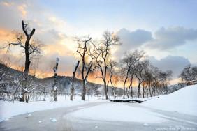 Зимний фестиваль Nami Island